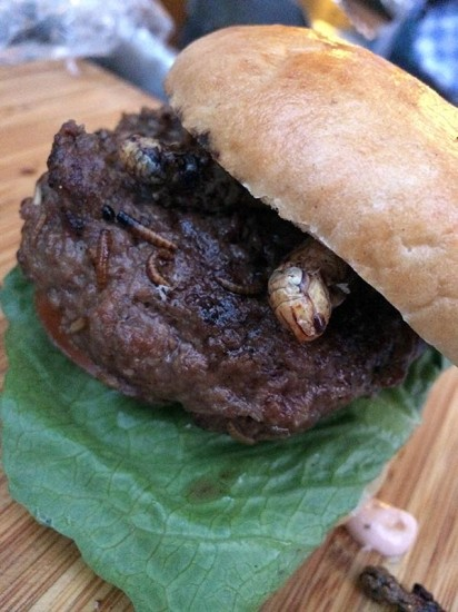 Mehlwurm-Grillen-Burger