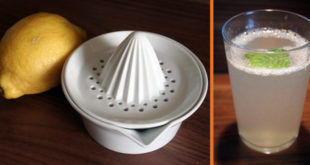 Zitronenlimonade ASA-Zitronenpresse Artikelbild